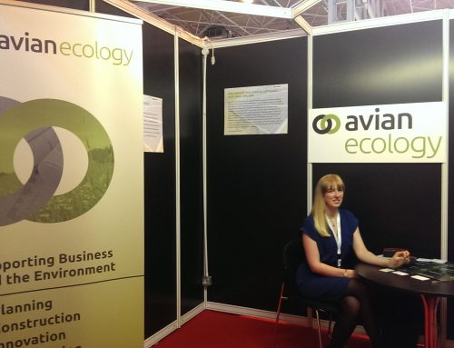 Visit us at Solar Energy UK!
